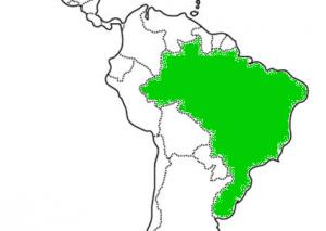 nombre dulce de leche en brasil